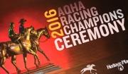 2016 AQHA Champions