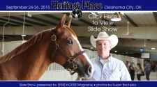 Heritage Place Yearling Sale - Saturday, September 26