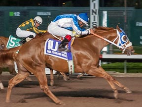 Ima Fearless Hero winning the Los Al $2 Million Futurity ©Los Alamitos
