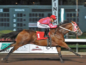 Moonist winning the Spencer L. Childers California Breeders' Championship Handicap ©Los Alamitos