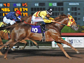 Quirky winning the Mildred N Vessels Maturity ©Los Alamitos