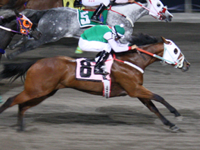 Volcoms Heart winning the Hipodromo Distaff Challenge ©Miguel A. Espinoza