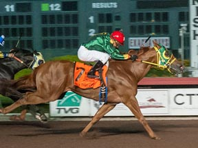 Walk Thru Fire winning the Ed Burke Million Futurity ©Los Alamitos