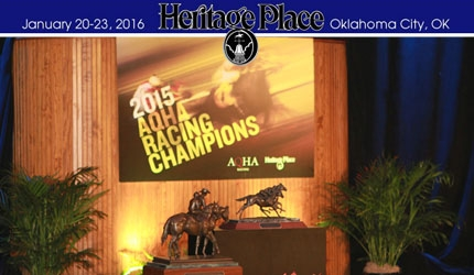 2015 Champion Awards Ceremony Slide Show Presentation