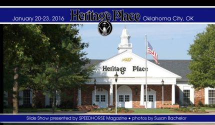 Heritage Place Winter Mixed Sale & Champion Night