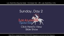 Los Alamitos Equine Sale - Sunday, October 4