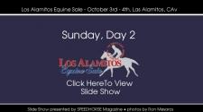 Los Alamitos Equine Sale - Sunday, October 4