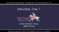 Los Alamitos Equine Sale - Saturday, October 3