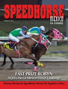 Current Speedhorse Mexico Magazine