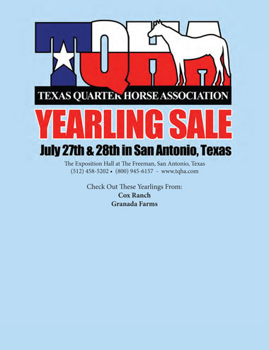 TQHA Yearling Sale