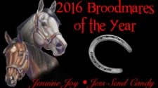 2016 Broodmares of the Year