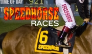 2016 Speedhorse Races