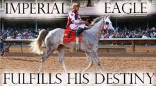 Imperial Eagle Fulfills His Destiny