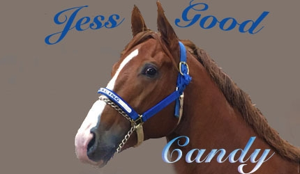 Jess Good Candy and the 2015 All American Pedigree