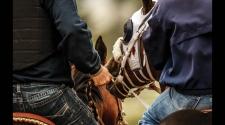 Riding Herd: Part 2