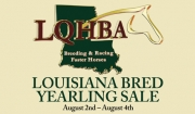 Flipping Book Highlights of the LQHBA Consignments who Advertised in the July issue of Speedhorse
