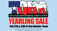 Flipping Book Highlights of the TQHA Yearling Consignments