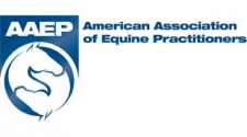 AAEP Foundation Equine Disaster Relief Fund Now Accepting Monetary Donations to Aid Hurricane Florence Victims