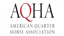AQHA Exploring Possibility of Relocation