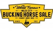 Bucking Horse Sale Cancels 3-Day Meet
