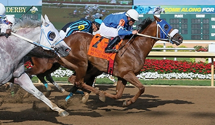 Beach Treat Named Indiana Bred Quarter Horse of the Year