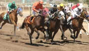Horse Racing Returns to Cochise County Fairgrounds