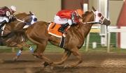 Dexxter Voted Remington Park's Horse of the Meet