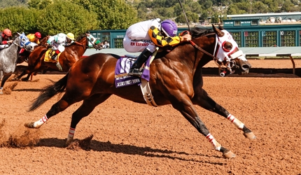 Two-Time World Champion Jessies First Down Retired
