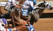 Missouri Rancher Offers Reward for Stolen Race Horse, Kansas Morning