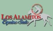 Los Alamitos Equine Sale