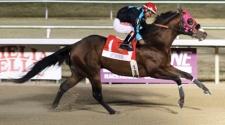 John Hamilton & Luis Vivanco Share Riding Title at Evangeline Downs