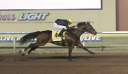 Painted Turnpike Breaks Remington Park Record for Most Career Wins