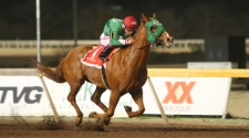Political Attraction Voted Remington Park Horse of The Meet