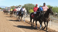 Successful Innovative Equine Wellness Program at Rillito Park