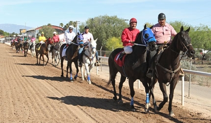 Successful Innovative Equine Wellness Program at Rillito Park