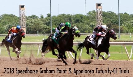 Speedhorse Graham Paint & Appaloosa Futurity Trials