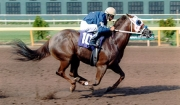 Vals Fortune Among Those Inducted Into LQHBA Hall of Fame