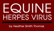 Equine Herpes Virus - Reprint SPEEDHORSE, June 2013