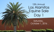 Los Alamitos Equine Sale, Day 1