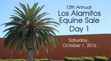 Los Alamitos Equine Sale, Day 1