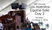 Los Alamitos Equine Sale - Day 2