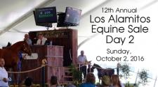 Los Alamitos Equine Sale - Day 2